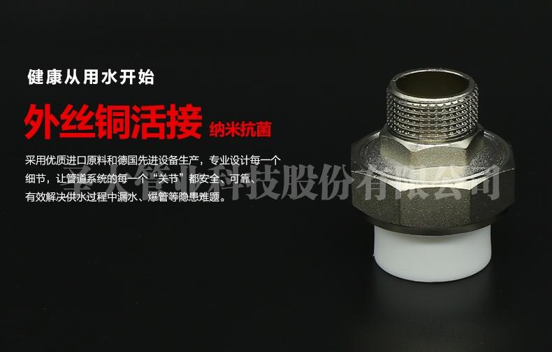 PPR外丝铜活接