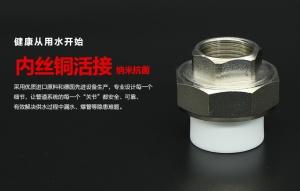 PPR内丝铜活接